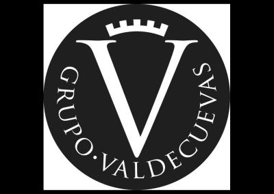 Grupo Valdecuevas