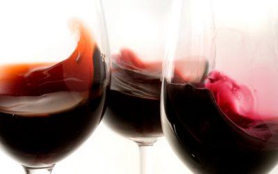 ¿Sabes qué es una Cata de Vinos?